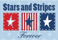 Stars and Stripes Fine Art Print