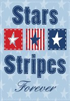 Stars and Strips Verticle Fine Art Print