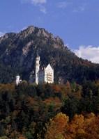 Bavarian Alps and Neuschwanstein Castle Fine Art Print