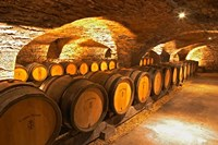 Oak Barrels in Cellar at Domaine Comte Senard Fine Art Print
