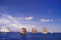 Tall Ships Race in Nova Scotia Fine Art Print