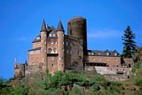 Castle, Rhine River, Germany Fine Art Print