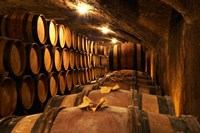 Wooden Barrels with Aging Wine in Cellar Fine Art Print