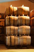 Oak Barrels, Maison Giraud-Hemart Fine Art Print