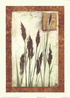 Green Grasses Fine Art Print