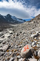 Glacier Viltragenkees, Mt Kleinvenediger Fine Art Print