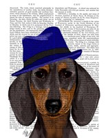 Dachshund With Blue Trilby Framed Print
