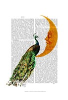 Peacock on the Moon Framed Print