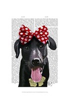 Black Labrador With Red Bow On Head Framed Print