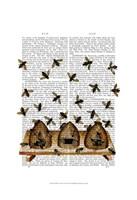 BeeHive Print Framed Print