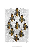 Medieval Bees Framed Print
