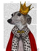Greyhound Queen Framed Print