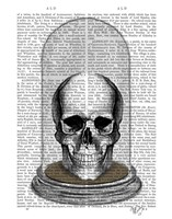 Skull In Bell Jar Framed Print