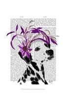 Dalmatian With Purple Fascinator Framed Print