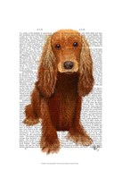 Cocker Spaniel Plain Fine Art Print