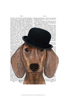 Dachshund with Black Bowler Hat Framed Print