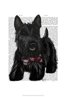 Scottish Terrier and Bow Fine Art Print