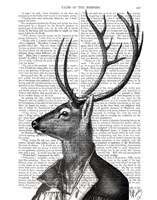 Deer Portrait 2 Framed Print