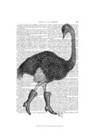 Ostrich In Boots Framed Print