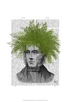 Asparagus Fern Head Plant Head Framed Print