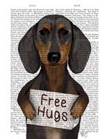 Dachshund Free Hugs Framed Print