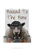 Baaad To the Bone II Framed Print