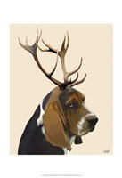 Basset Hound and Antlers II Framed Print