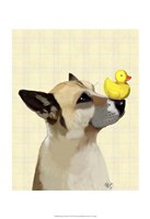 Dog and Duck Framed Print