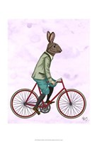 Rabbit On Bike Framed Print