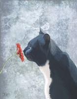 Black Cat Sniffing Flower Fine Art Print