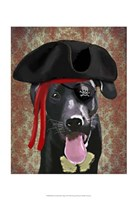 Black Labrador Pirate Dog Framed Print