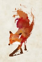 Vulpes Vulpes Fine Art Print
