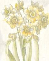 Belle Fleur Yellow IV Crop Framed Print