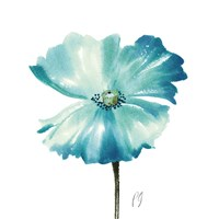 Poppies Tempo II Fine Art Print