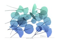 Explosion of Spring L245 Fine Art Print