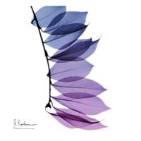 Camelia Leaf In Purp Fine Art Print