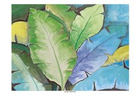Cerulean Rainforest Fine Art Print