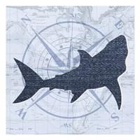 Shark 9 Fine Art Print