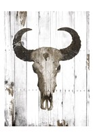 Bull Skull Brown Fine Art Print
