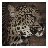 Animal Instincts Dulled Fine Art Print