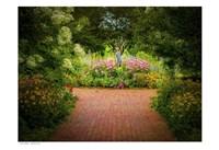 Garden 2 Fine Art Print