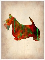 Scottish Terrier Watercolor 2 Fine Art Print