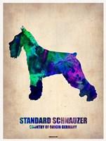 Standard Schnauzer Fine Art Print