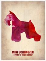 Miniature Schnauzer 1 Fine Art Print