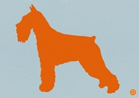 Standard Schnauzer Orange Fine Art Print