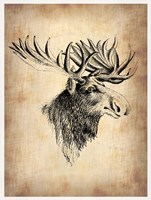 Vintage Moose Fine Art Print