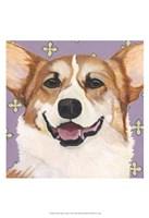 Dlynn's Dogs - Teddy Fine Art Print