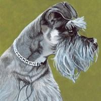 Dlynn's Dogs - Zoee Fine Art Print