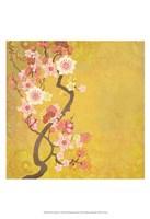 Tokyo Cherry IV Fine Art Print