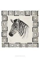 Safari Zebra II Framed Print